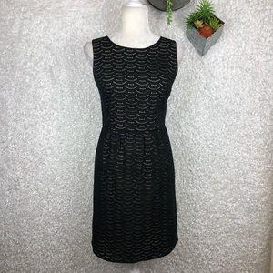 Ann Taylor LOFT Eyelet Overlay Dress | 6
